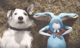 thinkbox_harvey_and_rabbit 2