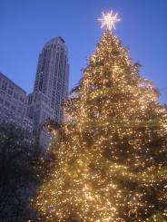 NYC Dec 2008 029